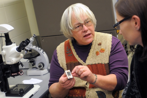 Professor of Geology Anne Argast