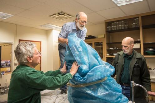 Packing the mastodon for transport