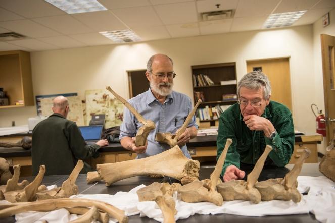 Fisher (left) with Jim Farlow (right), professor emeritus of geosciences